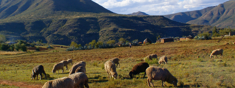 Mietwagen Lesotho