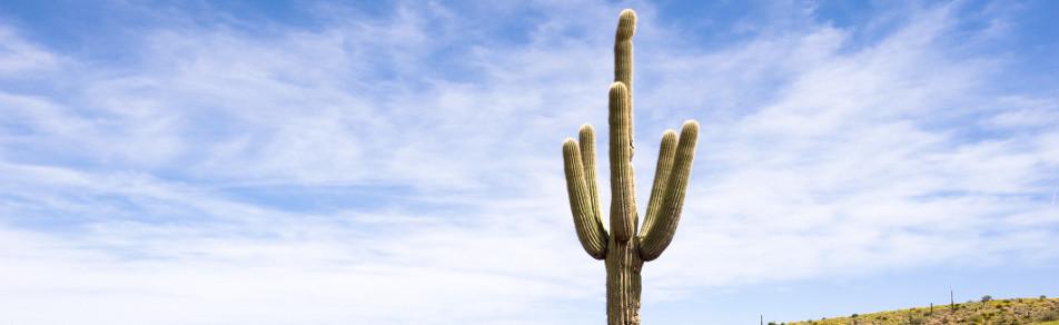 Ab 36€ pro Tag Mietwagen Tucson