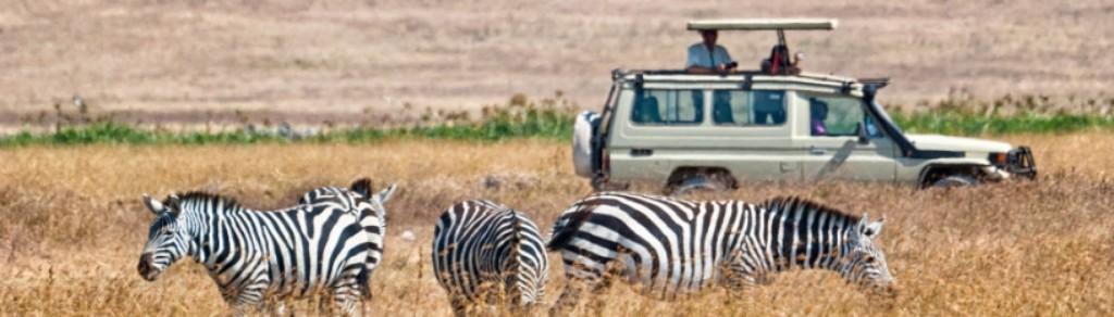 Noleggio auto Zanzibar