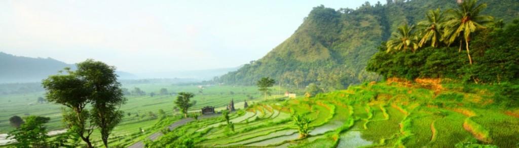 Vanaf €9 per dag Autohuur Bali